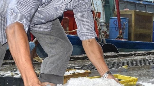 Cà Mau: Ngư dân cần trợ lực để bám biển