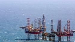 Tổ xây dựng Đề án tổ chức lại ngành Dầu khí thành lập năm nào?