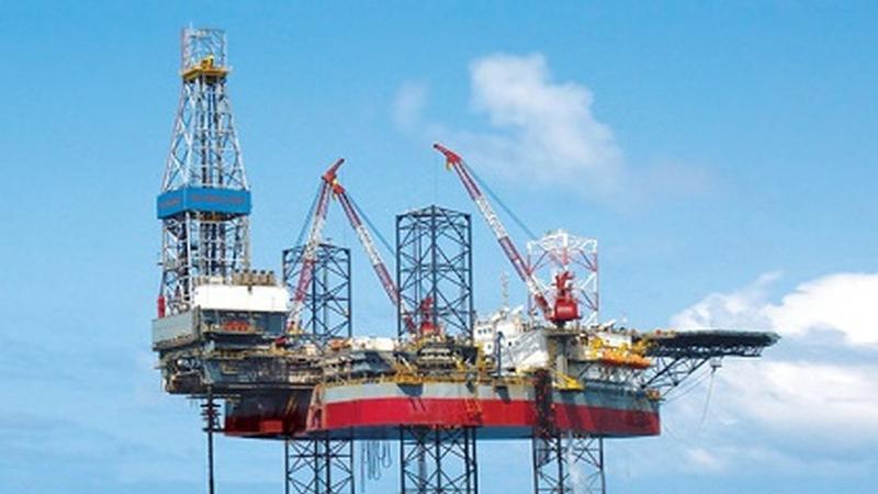 Cơ cấu tổ chức của Tổng công ty Dầu mỏ và Khí đốt