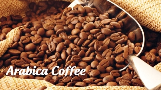 Giá cà phê hôm nay 10/6: Giao dịch trên 2 sàn phái sinh dao động mạnh