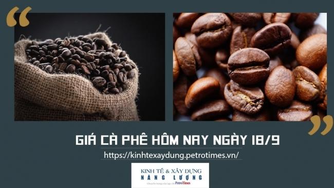 Giá cà phê hôm nay ngày 18/9: Lên đỉnh cao nhất trong 1 năm qua