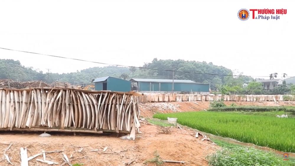 """Phú Thọ: UBND huyện Hạ Hòa """"phớt lờ"""" tất cả, không làm việc và cung cấp thông tin cho báo chí"""