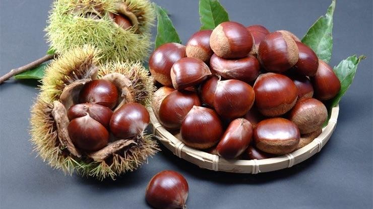 Hạt dẻ - Thức quà mùa thu mang nhiều lợi ích sức khỏe