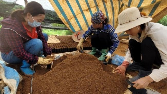 Yên Bái: Hội Phụ nữ Yên Bái tích cực hỗ trợ hội viên thoát nghèo